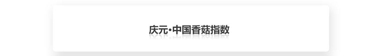 庆元标题.png